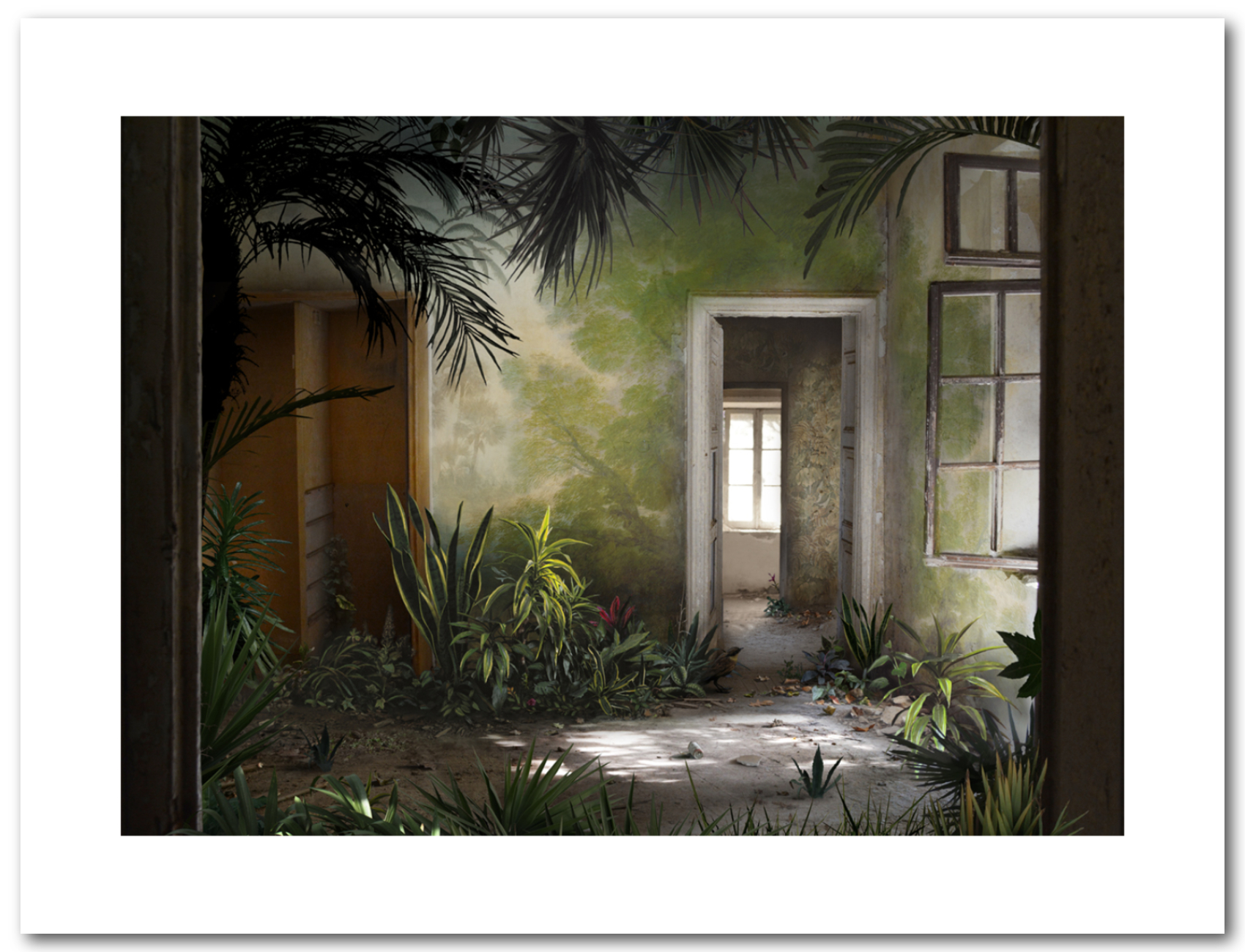 Hothouse - Suzanne Moxhay_1